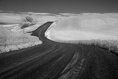 Pathway In The Palouse Poster by Jon Glaser