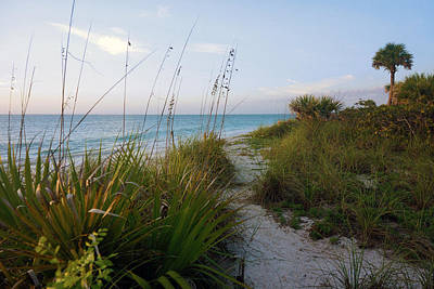 Pathway To Barefoot Beach  In Naples Poster