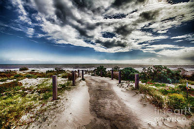 Pathway To The Beach Poster by Douglas Barnard