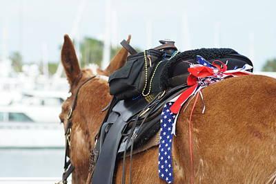 Patriotic Mule Poster