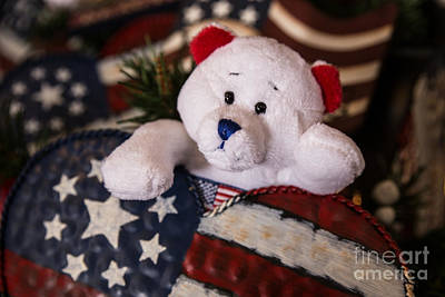 Patriotic Teddy Bear Poster