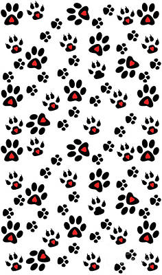 Paw Foot Prints Poster