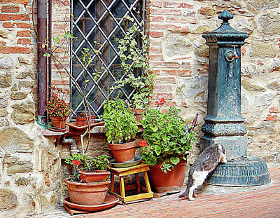 Pawse For A Drink In Paciano Poster by Dorothy Berry-Lound