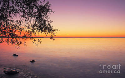 Peace At Sunset Poster by Charline Xia