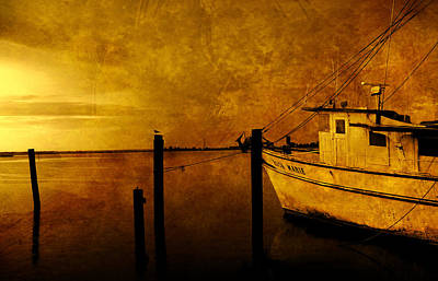 Peace In The Harbor Poster by Susanne Van Hulst