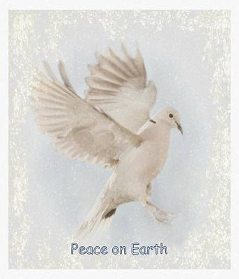 Poster featuring the photograph Peace On Earth by Diane Alexander