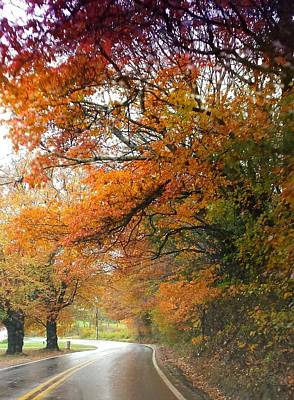Poster featuring the photograph Peaceful Autumn Road by Deb Martin-Webster