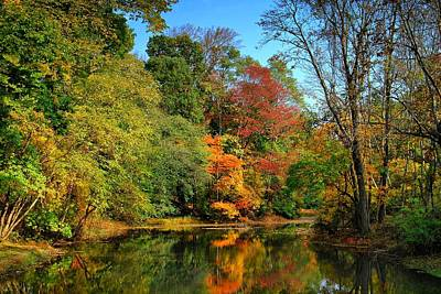 Peaceful Calm - Allaire State Park Poster by Angie Tirado