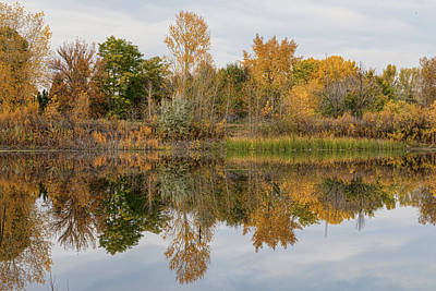 Peaceful Calm Autumn Afternoon Poster