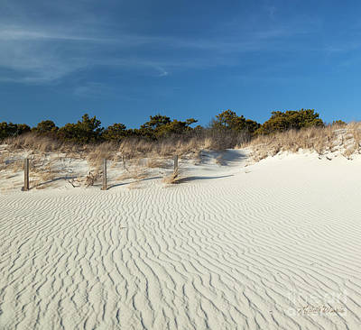 Poster featuring the photograph Peaceful Cape Cod by Michelle Wiarda