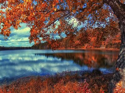 Peaceful Lake View Poster