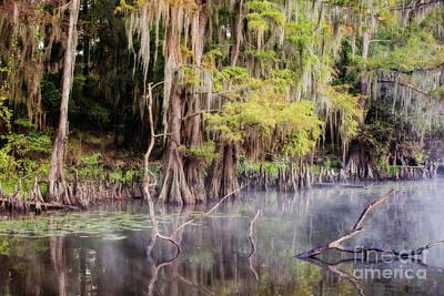 Peaceful Morning On Big Cypress Bayou Texas Poster