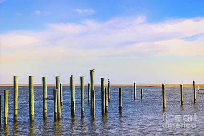 Poster featuring the photograph Peaceful Tranquility by Colleen Kammerer