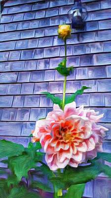 Peach Dahlia In Oil Poster by Jeffrey Canha