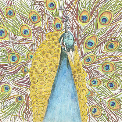 Poster featuring the drawing Peacock Two by Arlene Crafton