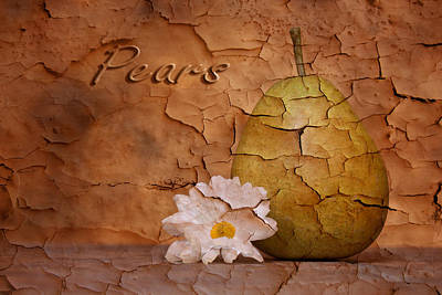 Pear With Daisy Poster by Tom Mc Nemar