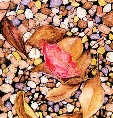 Pebbles And Leaves Poster by Jan Amiss