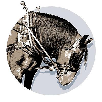 Pei Tour Horse Poster
