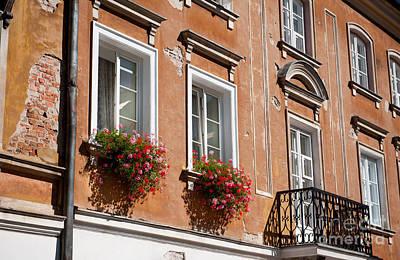 Pelargonium Peltatum Flowers On Windowsills  Poster by Arletta Cwalina