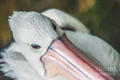 Pelican Brief   Go6 Poster