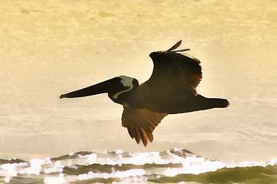 Pelican Patrol Poster by Jim Proctor