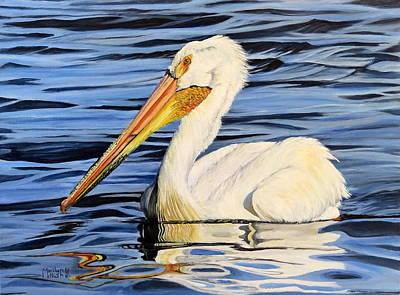 Pelican Posing Poster by Marilyn McNish