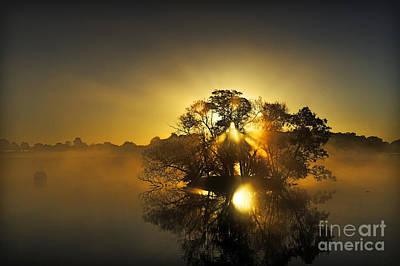 Pen Ponds Sunrise Poster by Richard Allen