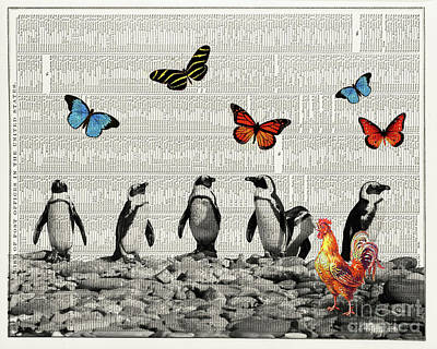 Penguins And Butterflies Poster by Delphimages Photo Creations