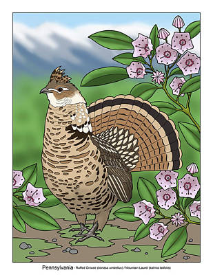 Pennsylvania State Bird Grouse And Flower Laurel Poster by Crista Forest
