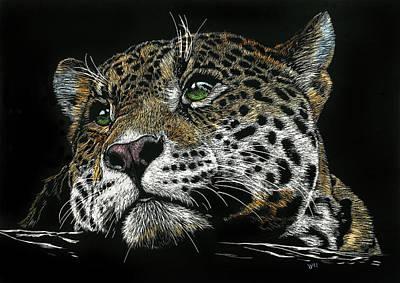 Pensive Leopard Poster