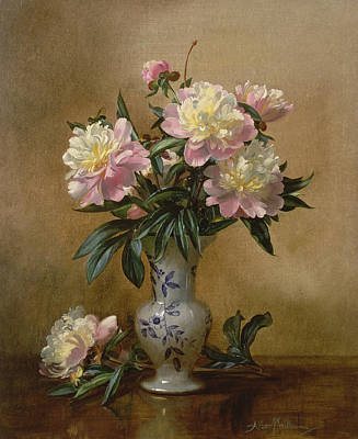 Peonies In A Blue And White Vase Poster by Albert Williams