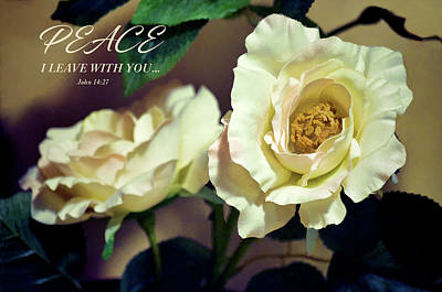 Peonies Portrait And Scripture Poster by Sandi OReilly