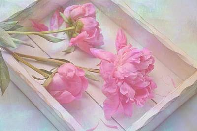 Poster featuring the photograph Peonies In White Box by Diane Alexander