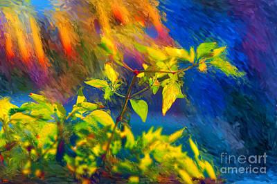 Pepper Plant II Poster