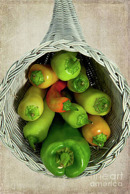 Poster featuring the photograph Peppers In A Horn Of Plenty Basket by Dan Carmichael