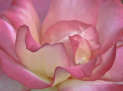 Pink Rose Petals Poster by Joann Copeland-Paul