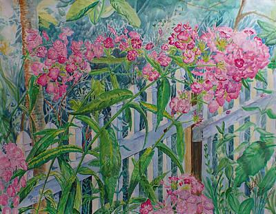 Perky Pink Phlox In A Dahlonega Garden Poster