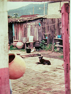 Poster featuring the photograph Perro On The Patio by Charles McKelroy