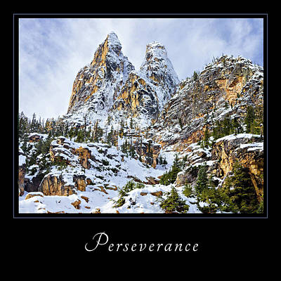 Poster featuring the photograph Perserverance 1 by Mary Jo Allen