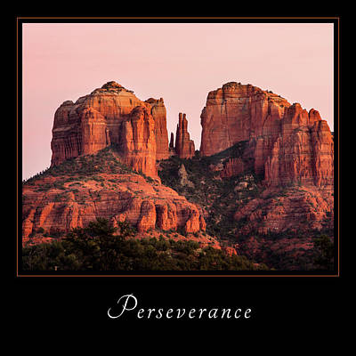 Poster featuring the photograph Perserverance 3 by Mary Jo Allen