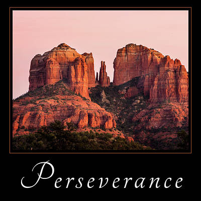 Poster featuring the photograph Perseverance by Mary Jo Allen