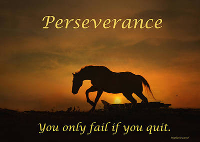 Perseverance Motivational Horse In The Sunset Poster