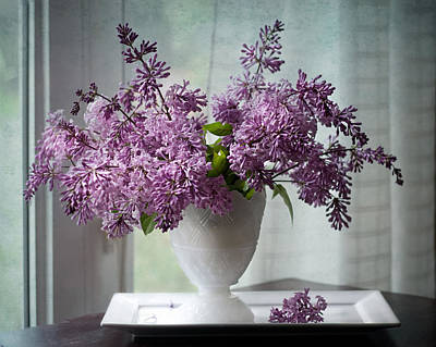 Persian Lilacs By The Window Poster by Maggie Terlecki
