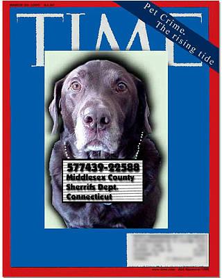 Pet Crime Poster