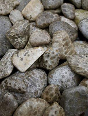 Petoskey Stones Poster by Kim Croff