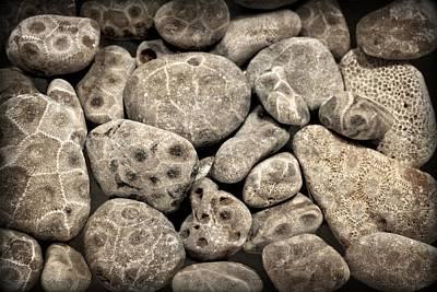 Petoskey Stones Vl Poster