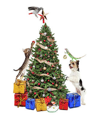 Pets Decorating Christmas Tree Poster