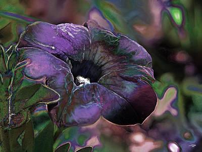 Petunia 1 Poster by Stuart Turnbull
