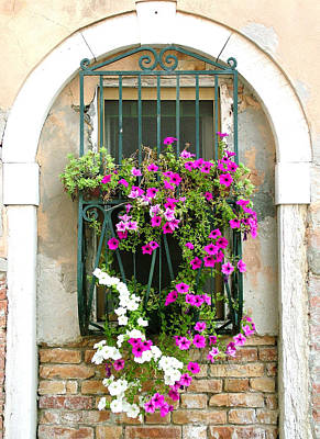 Poster featuring the photograph Petunias Through Wrought Iron by Donna Corless