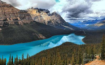 Peyto Lake Refections Poster by Adam Jewell